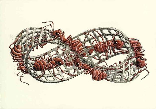 Möbius Strip II (Red Ants) woodcut (1963)